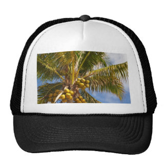 palm trees on the beach trucker hat