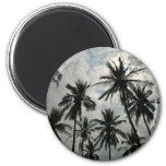 Palm Trees over Mexico Fridge Magnets