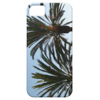 Palm Trees Photo iPhone / iPad case