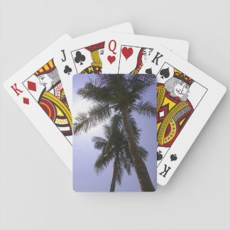 Palm Trees Playing Cards