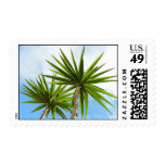 Palm trees postage stamp