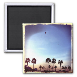 Palm Trees Retro Filter Magnet