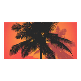 Palm Trees Sunset Silhouettes Card