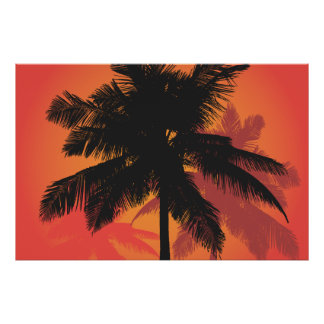 Palm Trees Sunset Silhouettes Posters