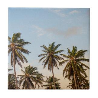 Palm Trees Tile