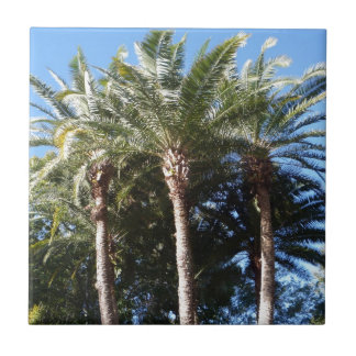 Palm Trees Small Square Tile
