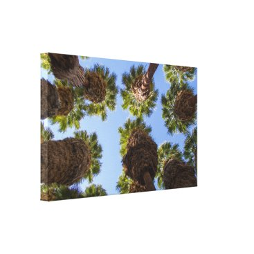 Beach Themed Palm Trees Unique View Canvas Art