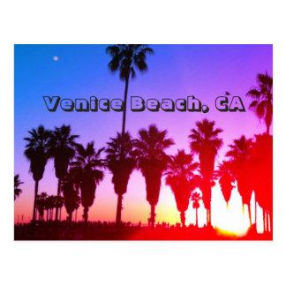Palm Trees Venice Beach Postcard