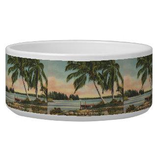 palm trees vintage bowl