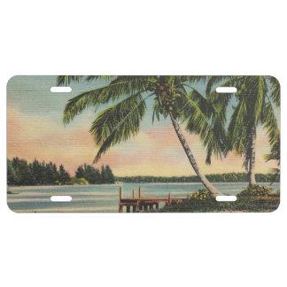 palm trees vintage license plate