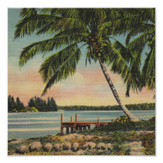 palm trees vintage poster