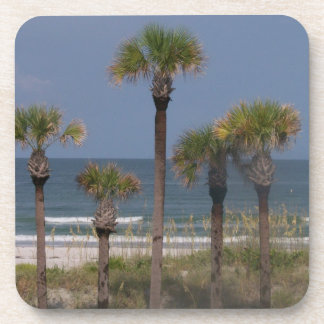 Palm Trees with a Surf Backdrop Beverage Coaster