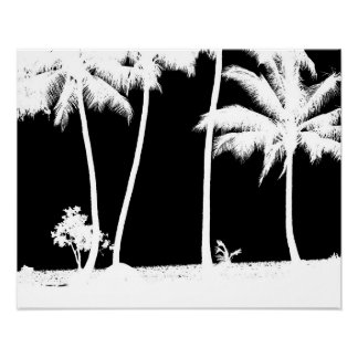 Palm Tress Poster