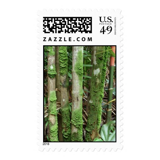 Palm Trunks Covered with Moss Stamp