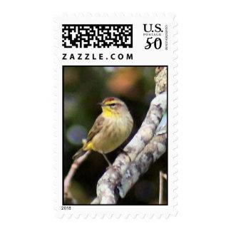 Palm Warbler Postage Stamp