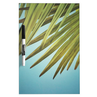 Palm whisk in the summer sky dry erase board