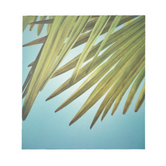 Palm whisk in the summer sky notepad