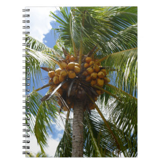 Palm with coconuts spiral notebook
