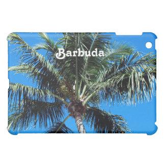 Palma de Barbuda