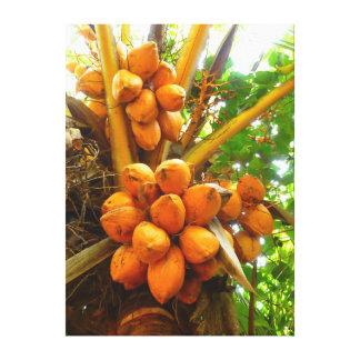 Palma de coco impresiones en lona estiradas