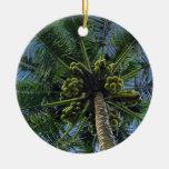 Palma de coco ornamentos de navidad