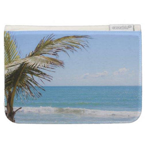 Palma de coco y fotografía azul de la playa del ma