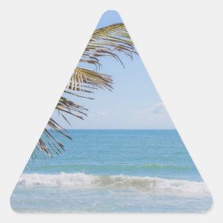Palma de coco y fotografía azul de la playa del calcomanías trianguladas