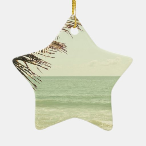 Palma de coco y fotografía en colores pastel de la adorno navideño de cerámica en forma de estrella