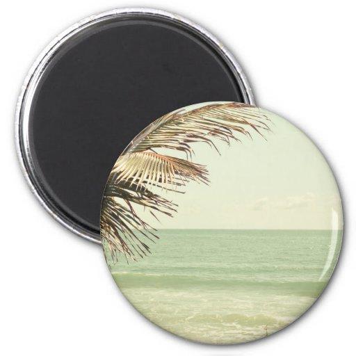 Palma de coco y fotografía en colores pastel de la imanes de nevera