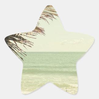 Palma de coco y fotografía en colores pastel de la pegatina en forma de estrella