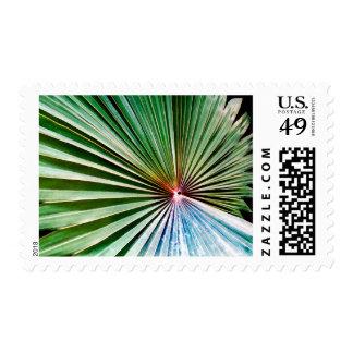Palma de fan de California Timbres Postales
