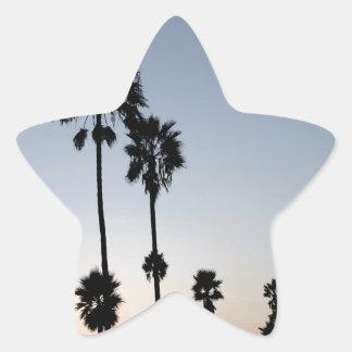 Palma de la playa de Venecia del árbol Pegatina En Forma De Estrella