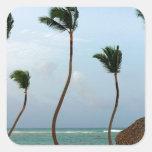 Palma de la playa pegatinas cuadradases personalizadas