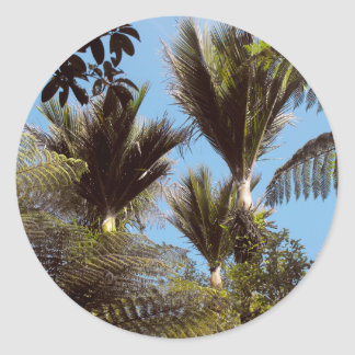 Palma de Nikau Pegatina Redonda
