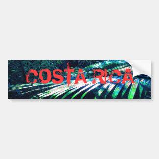 Palma del azul de Rica- de la costa Pegatina De Parachoque
