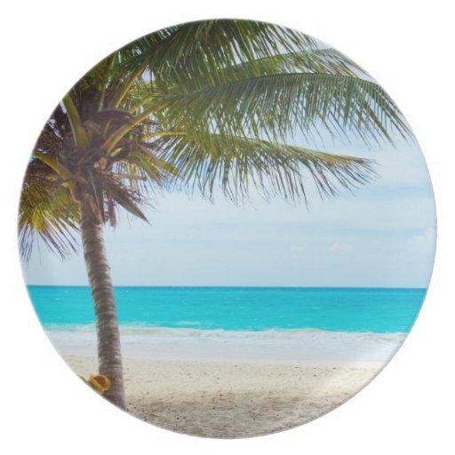 Palma en la playa plato