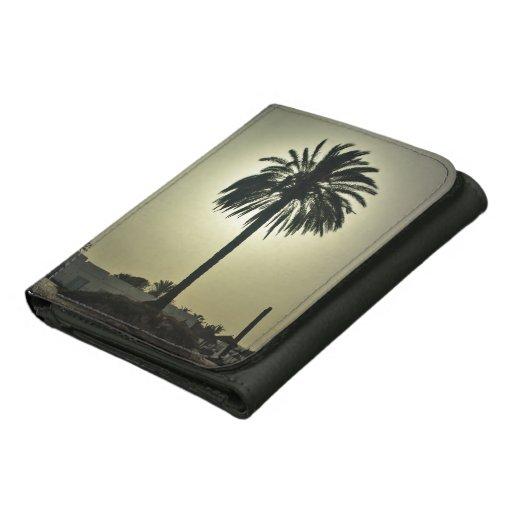 Palma soleada