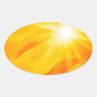Palma soleada Hawaii del cielo