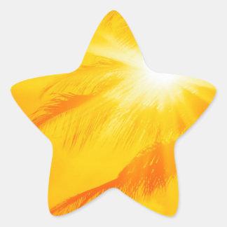 Palma soleada Hawaii del cielo Pegatina En Forma De Estrella