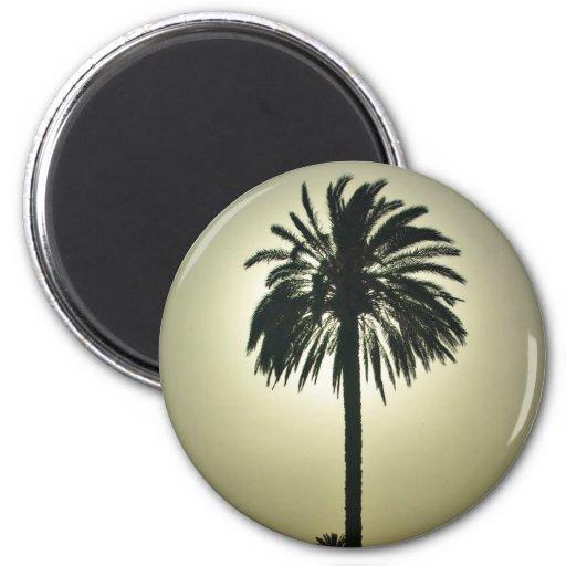 Palma soleada imán