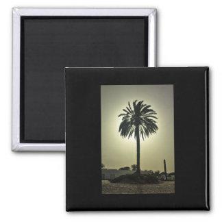 Palma soleada imán cuadrado