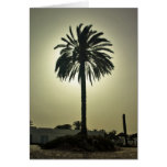 Palma soleada tarjeta de felicitación