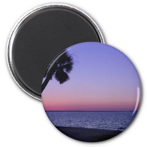 Palma      solitaria en púrpura imán de frigorífico