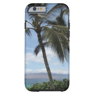 Palma Treescase de Maui