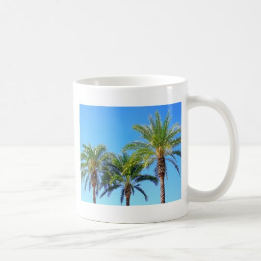 Palma triple taza
