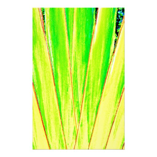 Palma verde papelería de diseño