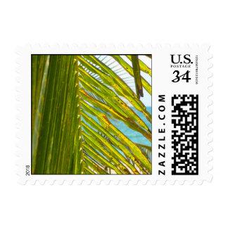 Palma y océano timbre postal