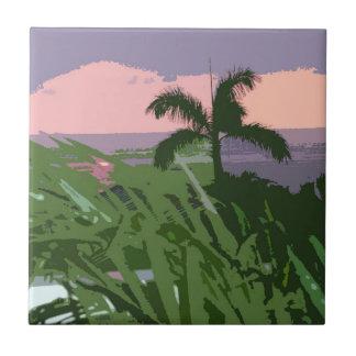 Palma y teja hawaianas tropicales del paisaje mari