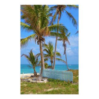 Palmas bahamesas  papeleria