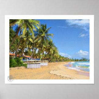 Palmas Beach Posters